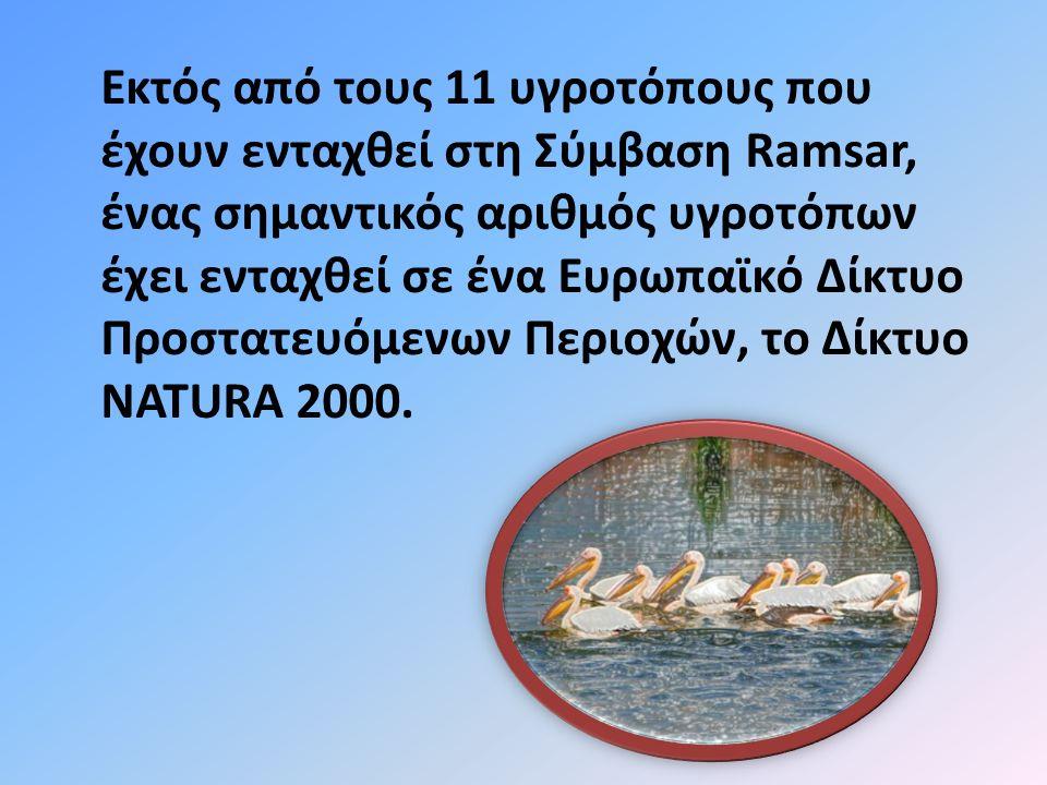 Εκτός από τους 11 υγροτόπους που έχουν ενταχθεί στη Σύμβαση Ramsar, ένας σημαντικός αριθμός υγροτόπων έχει ενταχθεί σε ένα Ευρωπαϊκό Δίκτυο Προστατευόμενων Περιοχών, το Δίκτυο NATURA 2000.