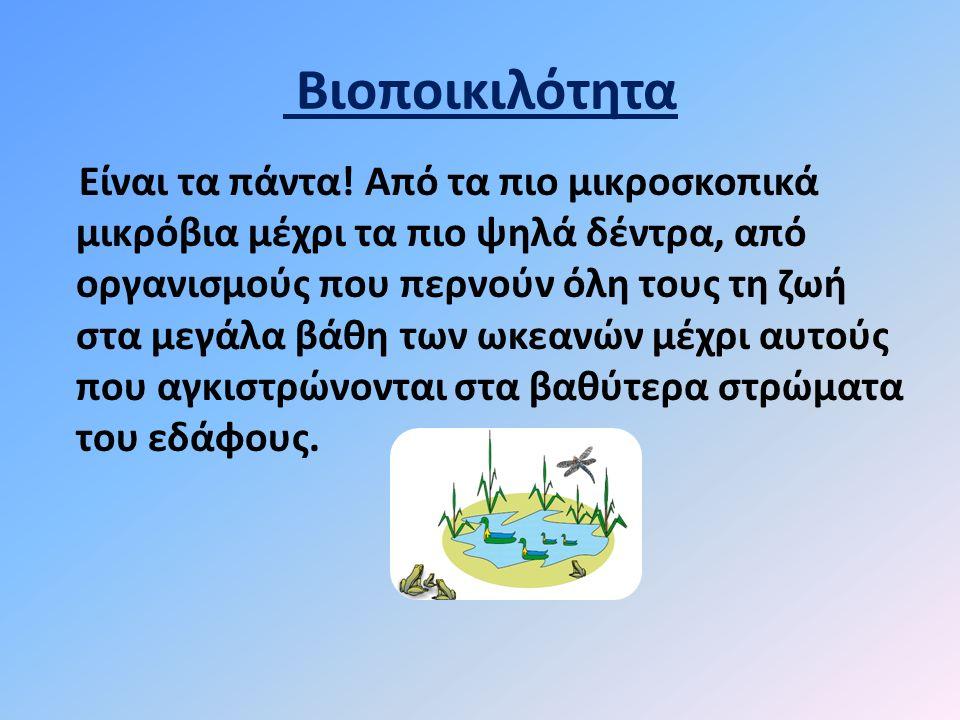 Ο όρος βιοποικιλότητα χρησιμοποιείται για να περιγράψει:  τα διαφορετικά περιβάλλοντα του πλανήτη μας  το σύνολο των ζωντανών μορφών που φιλοξενούν  τα γήινα οικοσυστήματα και τη ζωή που αναπτύσσεται σε αυτά