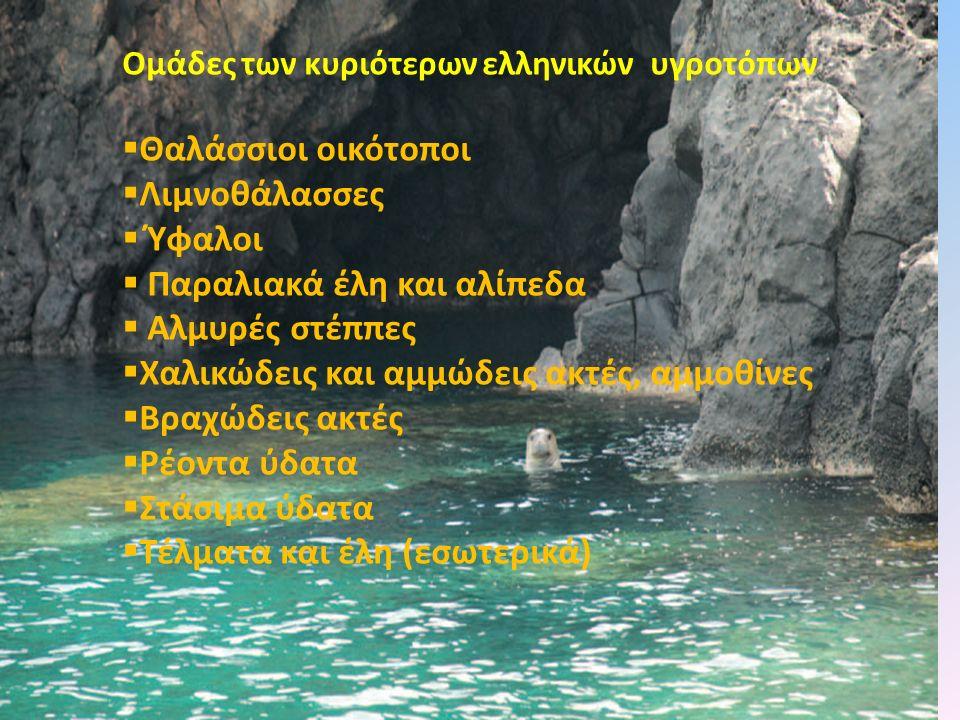 Ομάδες των κυριότερων ελληνικών υγροτόπων  Θαλάσσιοι οικότοποι  Λιμνοθάλασσες  Ύφαλοι  Παραλιακά έλη και αλίπεδα  Αλμυρές στέππες  Χαλικώδεις κα