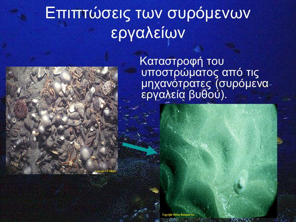 Επιπτώσεις των συρόμενων εργαλείων Σύλληψη μεγάλου αριθμού ειδών μη-στόχων, στα οποία περιλαμβάνονται ψάρια, ασπόνδυλα, θαλάσσια θηλαστικά, χελώνες και πουλιά.