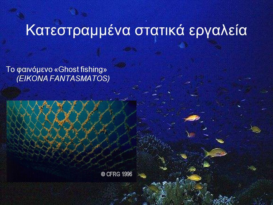 Μείωση των παραλιευμάτων (by-catch) Ελάττωση της αλίευσης των ιχθυδίων μη εμπορικού μεγέθους Μείωση των επιπτώσεων στο υπόστρωμα Ελάττωση της ρύπανσης του θαλάσσιου περιβάλλοντος Στόχοι: αύξηση της επιλεκτικότητας
