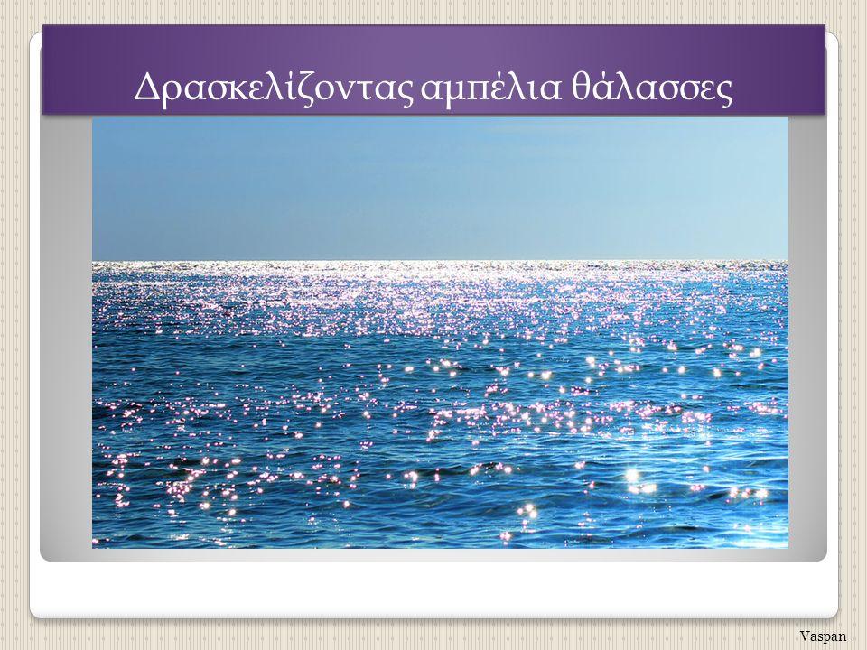Δρασκελίζοντας αμπέλια θάλασσες Vaspan