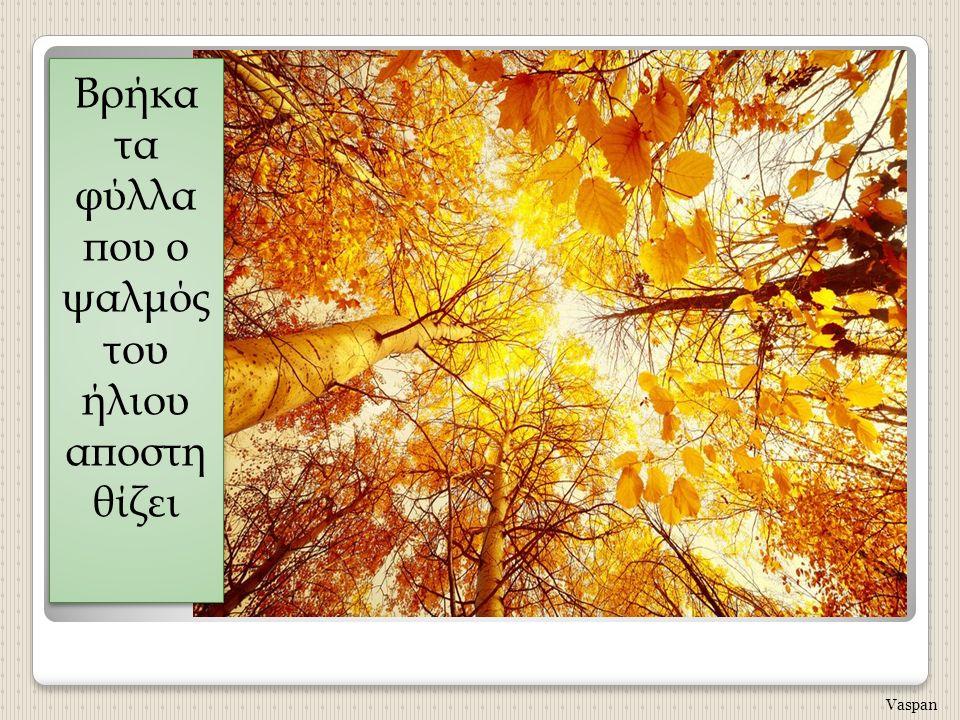 Βρήκα τα φύλλα που ο ψαλμός του ήλιου αποστη θίζει Vaspan