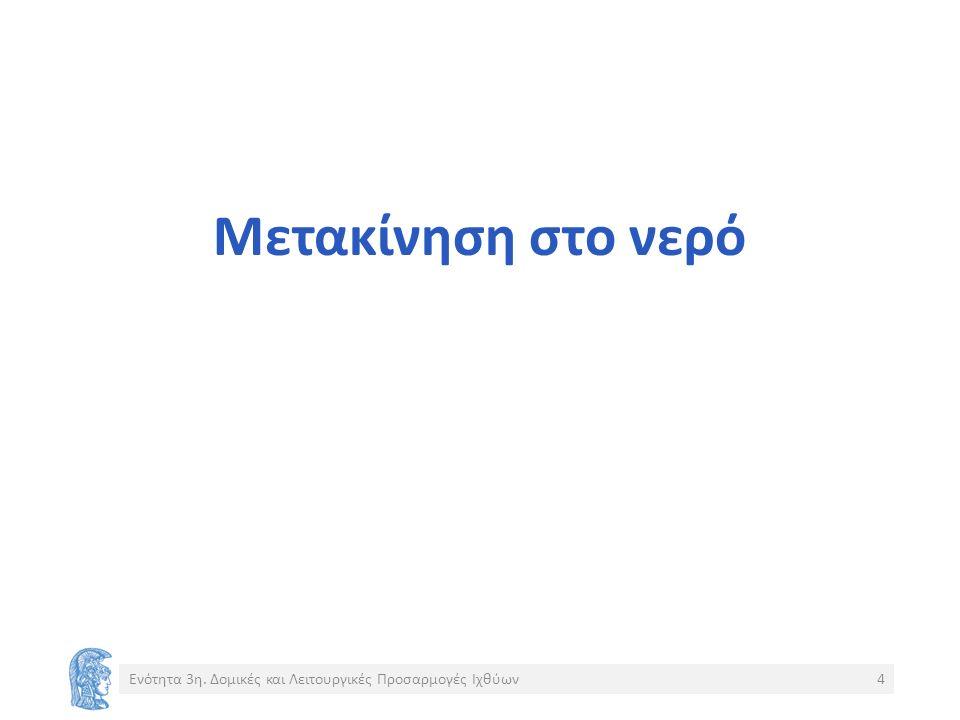 Σημείωμα Αναφοράς Copyright Εθνικόν και Καποδιστριακόν Πανεπιστήμιον Αθηνών, Περσεφόνη Μεγαλοφώνου, Επίκουρη Καθηγήτρια.
