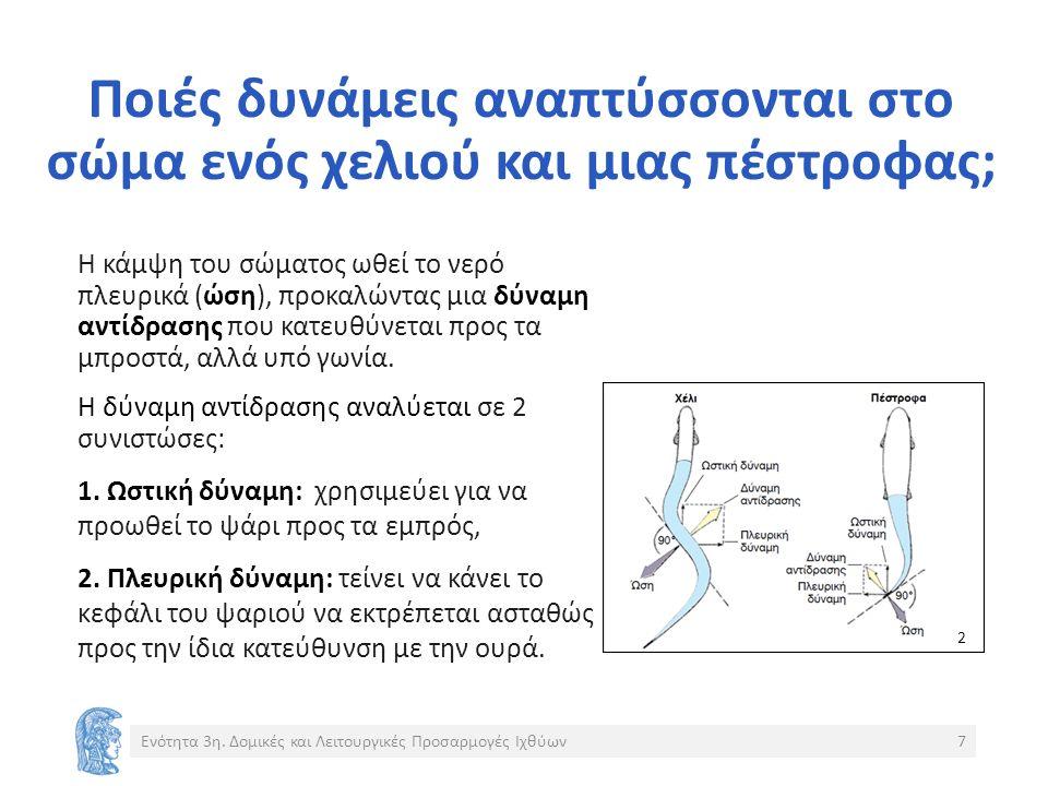 Θαλάσσιοι οστεϊχθύες Στο θαλάσσιο περιβάλλον η συγκέντρωση αλάτων είναι περίπου 1 Μ.