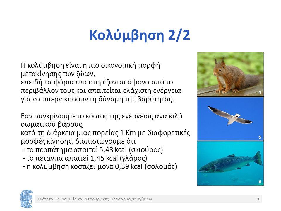 Ψάρια της θάλασσας Ένα ψάρι της θάλασσας διατηρεί ωσμωτική και ιοντική ισορροπία: 1.