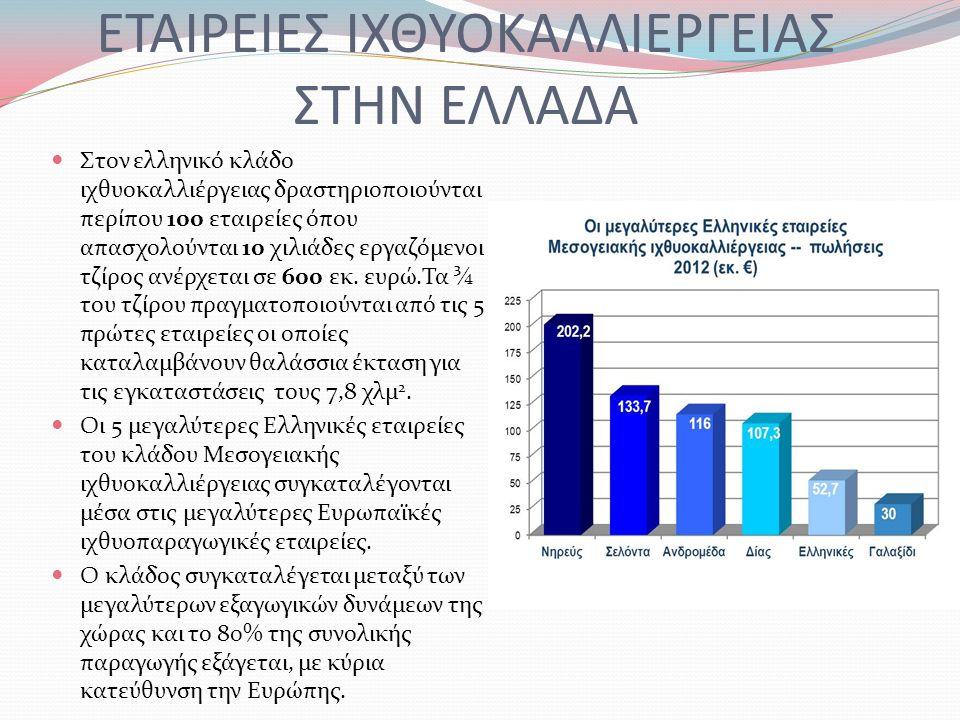 ΕΤΑΙΡΕΙΕΣ ΙΧΘΥΟΚΑΛΛΙΕΡΓΕΙΑΣ ΣΤΗΝ ΕΛΛΑΔΑ Στον ελληνικό κλάδο ιχθυοκαλλιέργειας δραστηριοποιούνται περίπου 100 εταιρείες όπου απασχολούνται 10 χιλιάδες εργαζόμενοι τζίρος ανέρχεται σε 600 εκ.