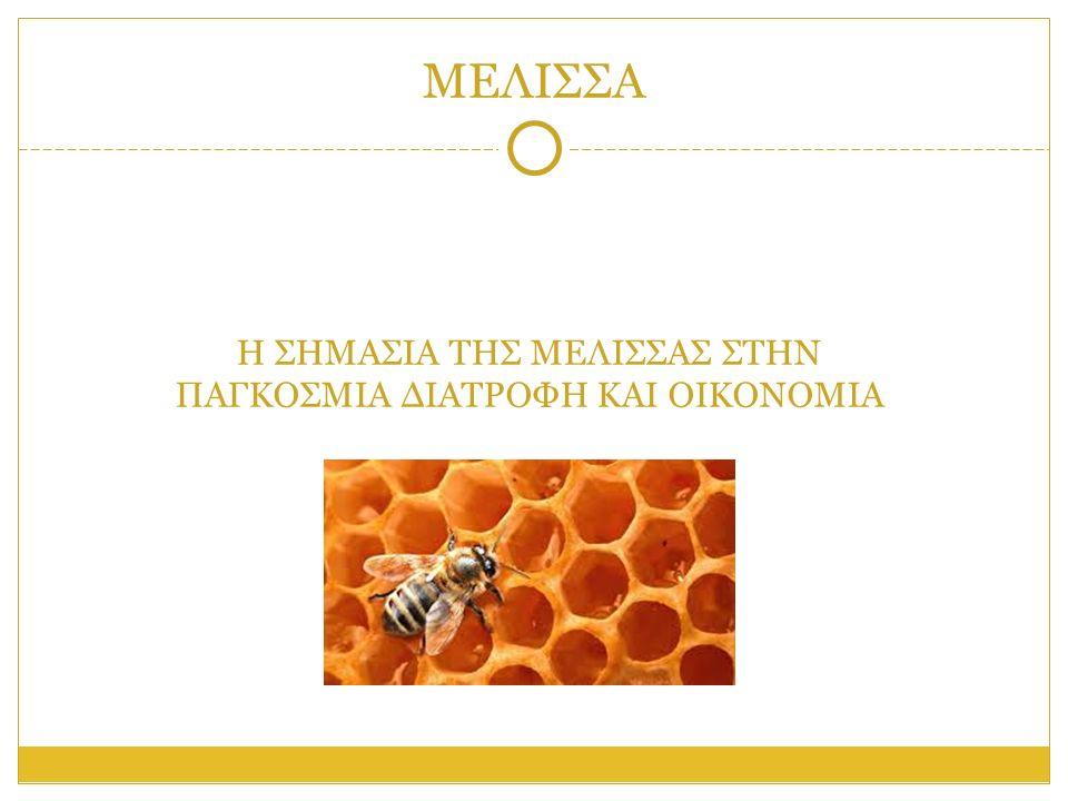 ΓΕΝΙΚΑ ΓΙΑ ΤΗ ΜΕΛΙΣΣΑ Η μέλισσα είναι έντομο από την τάξη υμενόπτερα, που θεωρείται από όλα γενικά τα έντομα το πιο σπουδαίο από οικονομικής άποψης για τον άνθρωπο.
