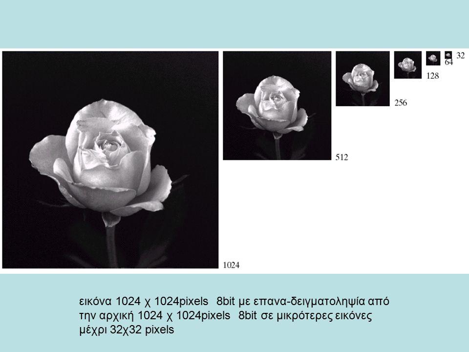 Αριστερά πάνω εικόνα 1024χ1024 8bit, επάνω στη μέση 512χ512, επάνω δεξιά 256χ256, αριστερά κάτω 128χ128, μέση κάτω 64χ64 και δεξια κάτω 32χ32 με επαναδειγματοληψία σε 1024χ1024