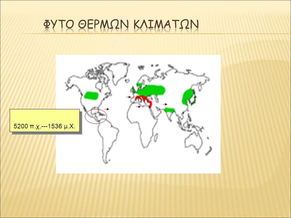 5200 π.χ.---1536 μ.Χ.