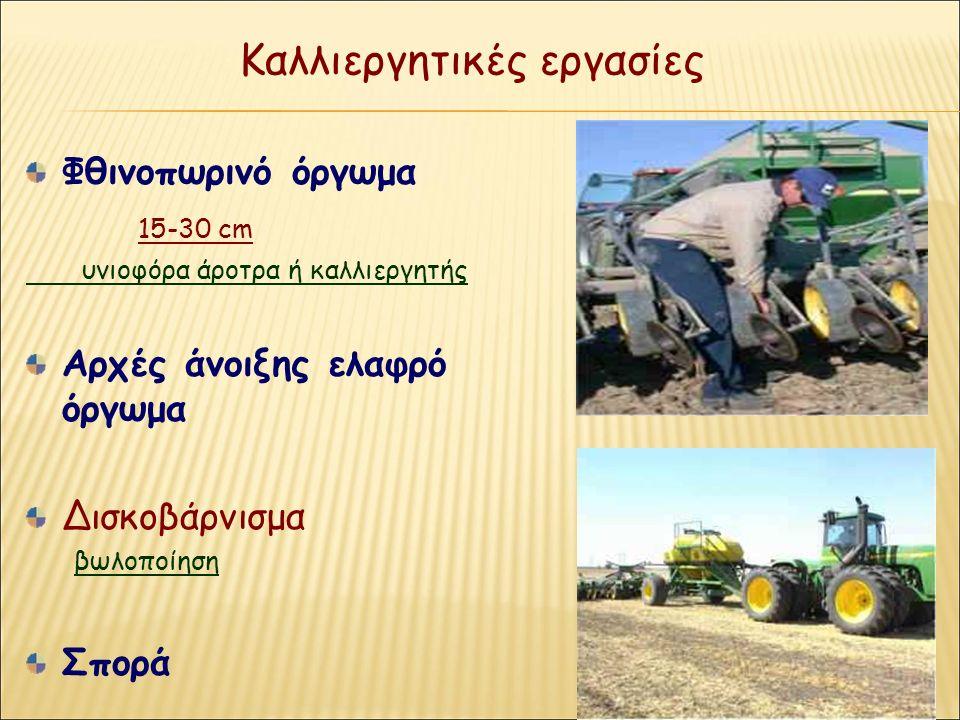 Καλλιεργητικές εργασίες Φθινοπωρινό όργωμα 15-30 cm υνιοφόρα άροτρα ή καλλιεργητής Αρχές άνοιξης ελαφρό όργωμα Δισκοβάρνισμα βωλοποίηση Σπορά