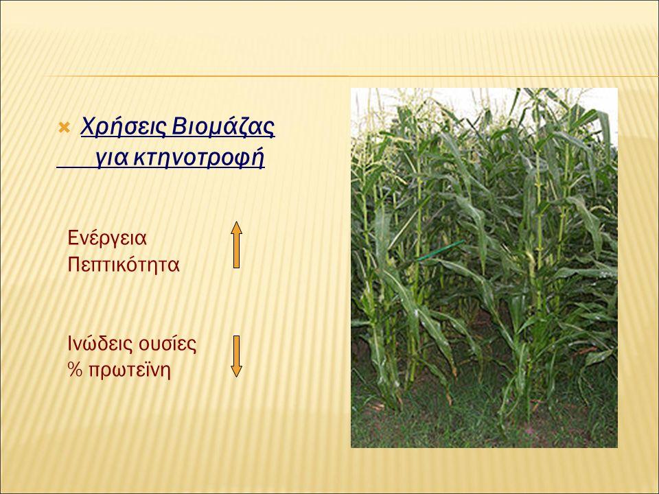  Χρήσεις Βιομάζας για κτηνοτροφή Ενέργεια Πεπτικότητα Ινώδεις ουσίες % πρωτεϊνη