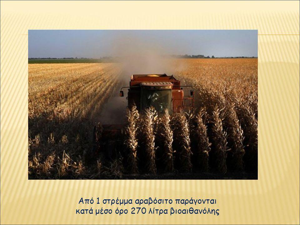 Από 1 στρέμμα αραβόσιτο παράγονται κατά μέσο όρο 270 λίτρα βιοαιθανόλης