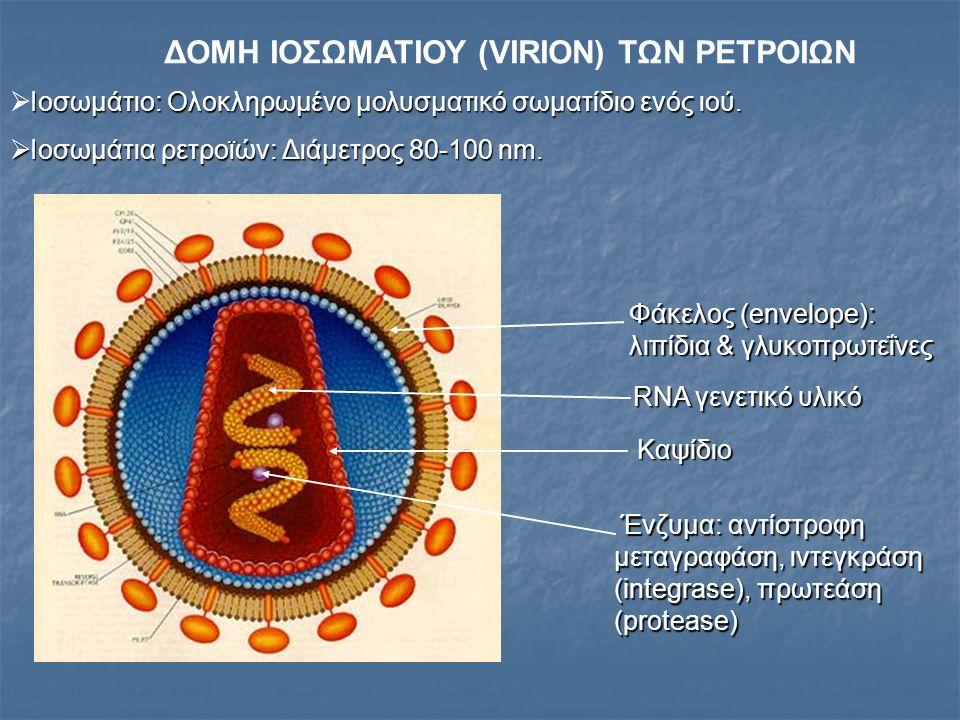 ΔΟΜΗ ΙΟΣΩΜΑΤΙΟΥ (VIRION) ΤΩΝ ΡΕΤΡΟΙΩΝ Ιοσωμάτιο: Ολοκληρωμένο μολυσματικό σωματίδιο ενός ιού.