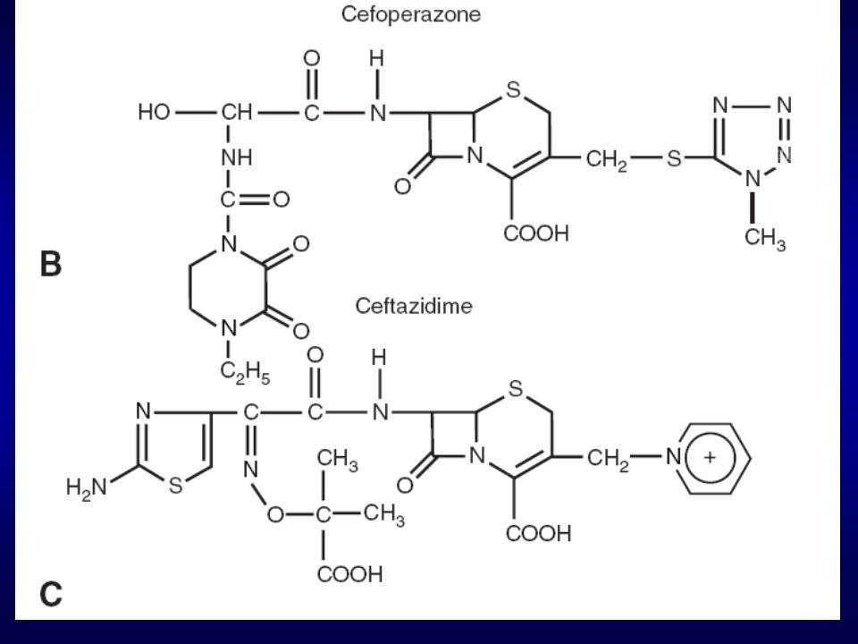 18 Αντιμικροβιακό Φάσμα (Τέταρτη Γενεά) Διπολικά μόρια, διαπερνούν με μεγάλη ευχέρεια την εξωτάτη μεμβράνη των Gram-αρνητικών Έχουν καλή χημική συγγένεια με τις PBP1, PBP2, PBP3 Είναι ασθενείς επαγωγείς των χρωμοσωμιακών β-λακταμασών της τάξεως AmpC