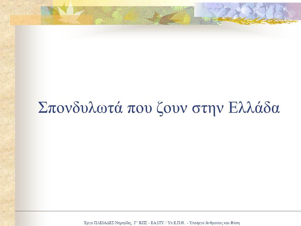 Έργο ΠΛΕΙΑΔΕΣ/Νηρηίδες, Γ' ΚΠΣ - ΕΑ.ΙΤΥ / Υπ.Ε.Π.Θ. - Υποέργο Άνθρωπος και Φύση Σπονδυλωτά που ζουν στην Ελλάδα