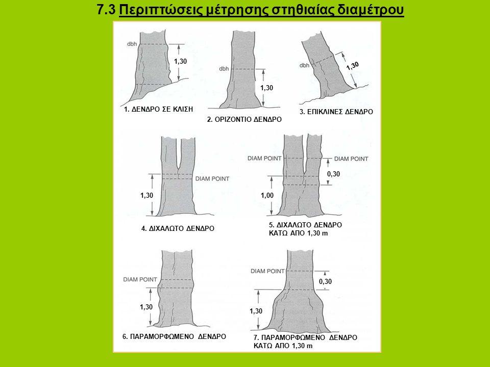 7.3 Περιπτώσεις μέτρησης στηθιαίας διαμέτρου 3.ΕΠΙΚΛΙΝΕΣ ΔΕΝΔΡΟ 1.