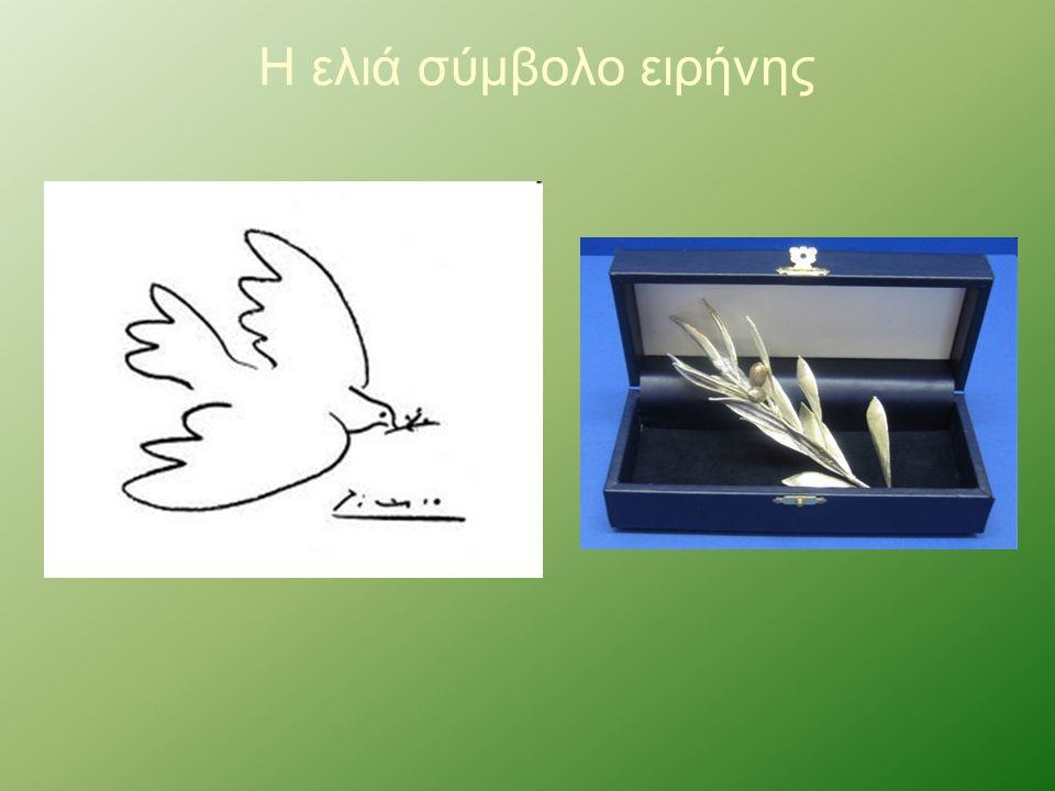Η ελιά σύμβολο ειρήνης
