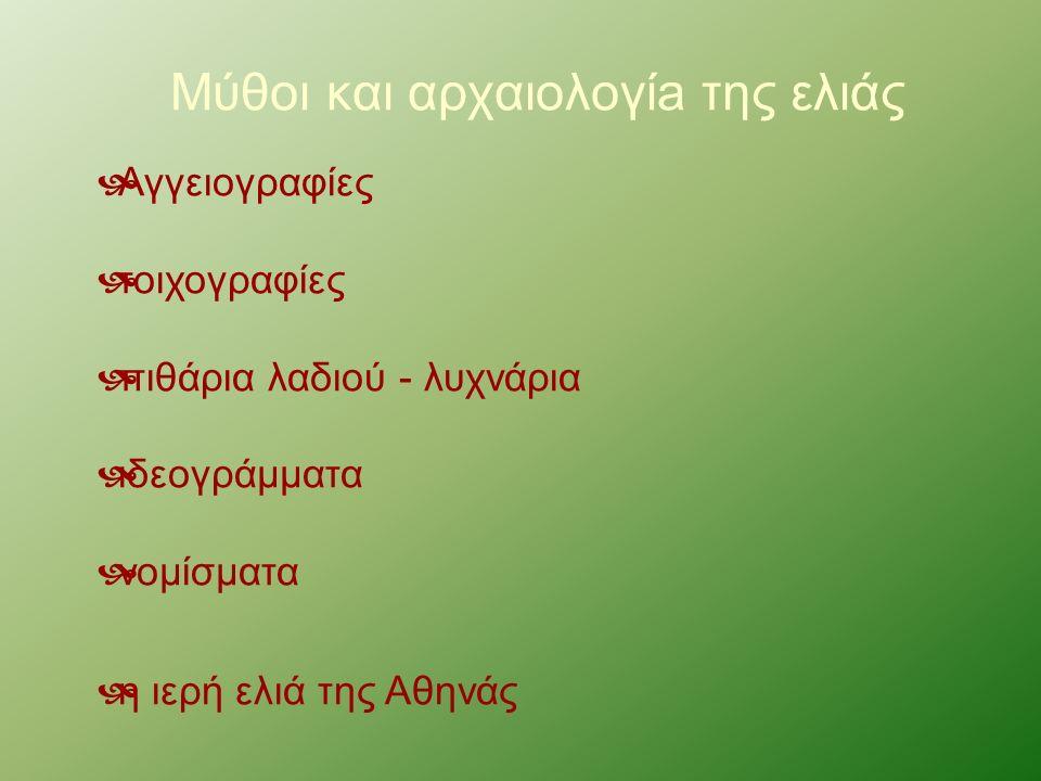 Μύθοι και αρχαιολογίa της ελιάς  Αγγειογραφίες  τοιχογραφίες  πιθάρια λαδιού - λυχνάρια  ιδεογράμματα  νομίσματα  η ιερή ελιά της Αθηνάς