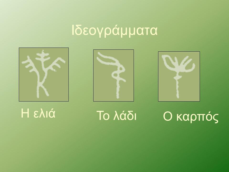 Ιδεογράμματα Η ελιά Το λάδι Ο καρπός