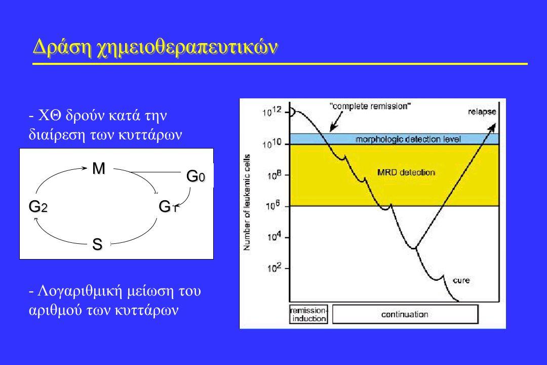 Δράση χημειοθεραπευτικών - ΧΘ δρούν κατά την διαίρεση των κυττάρων - Λογαριθμική μείωση του αριθμού των κυττάρων M S G1G1G1G1 G2G2G2G2 G0G0G0G0