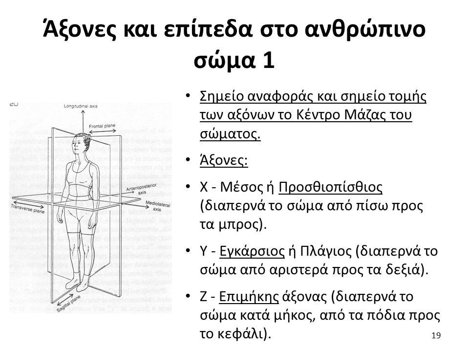 Άξονες και επίπεδα στο ανθρώπινο σώμα 1 Σημείο αναφοράς και σημείο τομής των αξόνων το Κέντρο Μάζας του σώματος.
