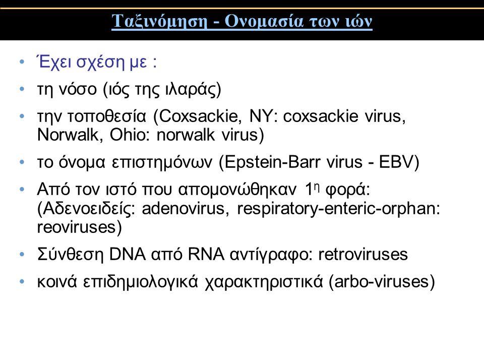 Ταξινόμηση - Ονομασία των ιών Έχει σχέση με : τη νόσο (ιός της ιλαράς) την τοποθεσία (Coxsackie, NY: coxsackie virus, Norwalk, Ohio: norwalk virus) το όνομα επιστημόνων (Epstein-Barr virus - EBV) Από τον ιστό που απομονώθηκαν 1 η φορά: (Αδενοειδείς: adenovirus, respiratory-enteric-orphan: reoviruses) Σύνθεση DNA από RNA αντίγραφο: retroviruses κοινά επιδημιολογικά χαρακτηριστικά (arbo-viruses)