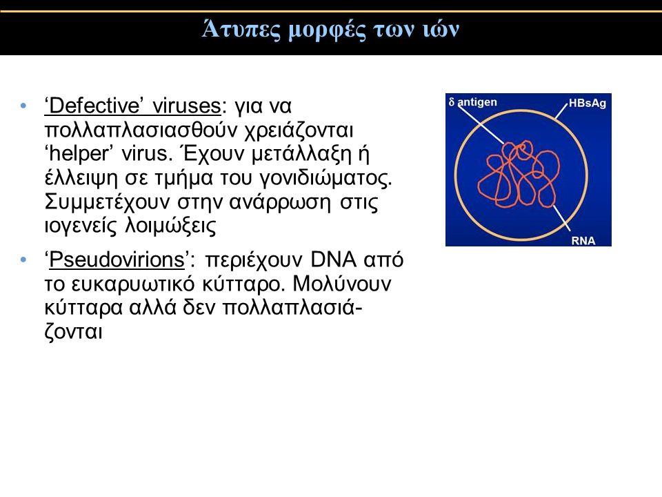 Άτυπες μορφές των ιών 'Defective' viruses: για να πολλαπλασιασθούν χρειάζονται 'helper' virus.