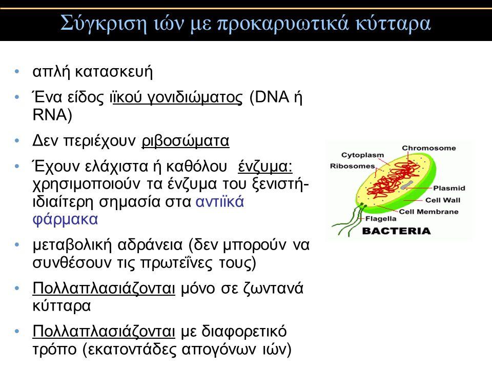 Σύγκριση ιών με προκαρυωτικά κύτταρα απλή κατασκευή Ένα είδος ιϊκού γονιδιώματος (DNA ή RNA) Δεν περιέχουν ριβοσώματα Έχουν ελάχιστα ή καθόλου ένζυμα: χρησιμοποιούν τα ένζυμα του ξενιστή- ιδιαίτερη σημασία στα αντιϊκά φάρμακα μεταβολική αδράνεια (δεν μπορούν να συνθέσουν τις πρωτεΐνες τους) Πολλαπλασιάζονται μόνο σε ζωντανά κύτταρα Πολλαπλασιάζονται με διαφορετικό τρόπο (εκατοντάδες απογόνων ιών)