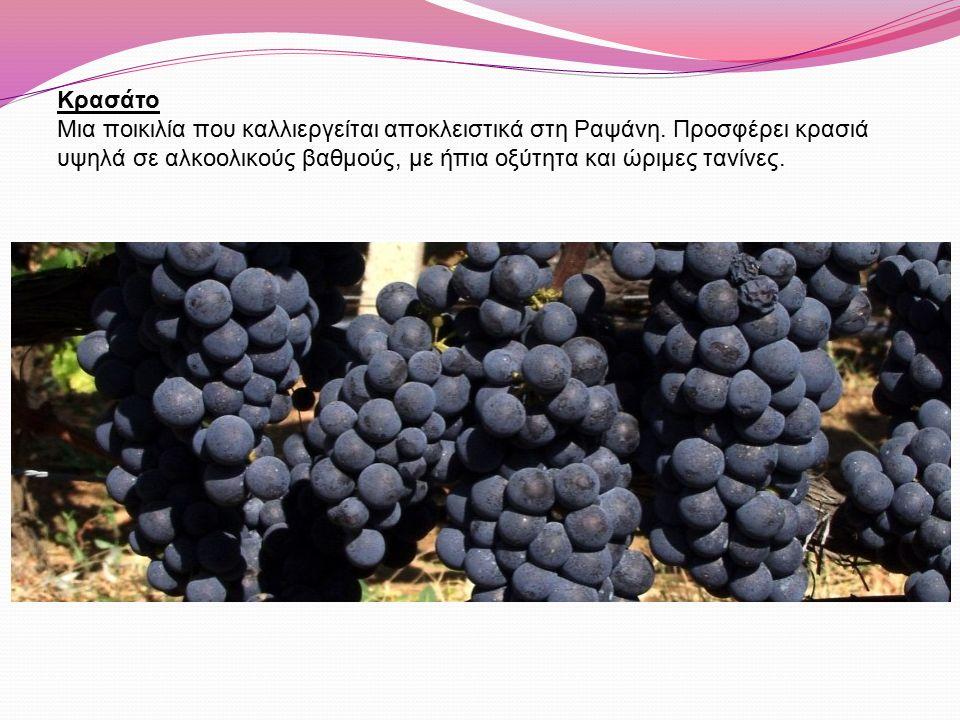 Κρασάτο Μια ποικιλία που καλλιεργείται αποκλειστικά στη Ραψάνη. Προσφέρει κρασιά υψηλά σε αλκοολικούς βαθμούς, με ήπια οξύτητα και ώριμες τανίνες.