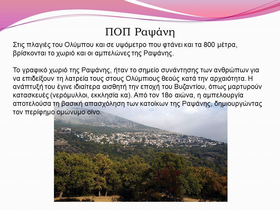 ΠΟΠ Ραψάνη Στις πλαγιές του Ολύμπου και σε υψόμετρο που φτάνει και τα 800 μέτρα, βρίσκονται το χωριό και οι αμπελώνες της Ραψάνης. Το γραφικό χωριό τη