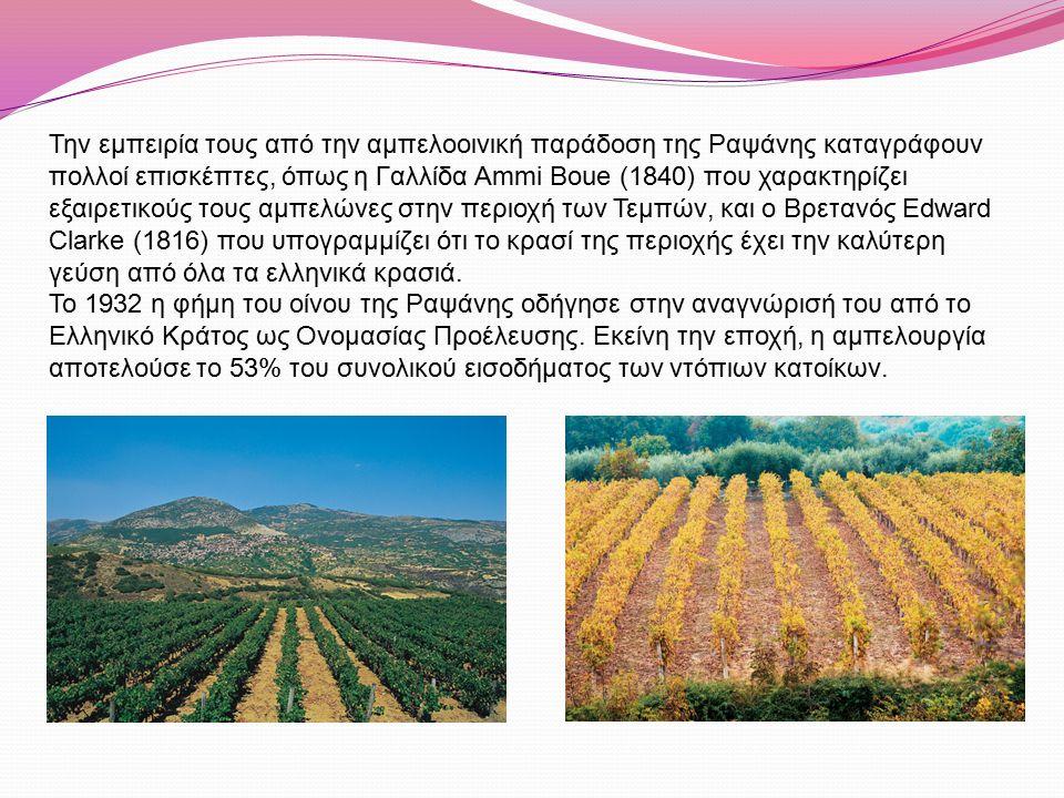 Η εσωτερική κατάσταση στην Ελλάδα, πριν και μετά τον Β΄ Παγκόσμιο πόλεμο και ο παγκόσμιος πόλεμος δεν επέτρεψαν την ανάπτυξη των αμπελώνων παραγωγής οίνων ονομασίας προέλευσης.