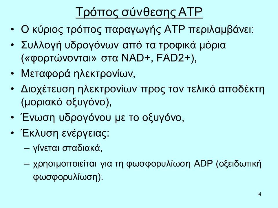4 Τρόπος σύνθεσης ATP O κύριος τρόπος παραγωγής ΑΤΡ περιλαμβάνει: Συλλογή υδρογόνων από τα τροφικά μόρια («φορτώνονται» στα NAD+, FAD2+), Μεταφορά ηλε