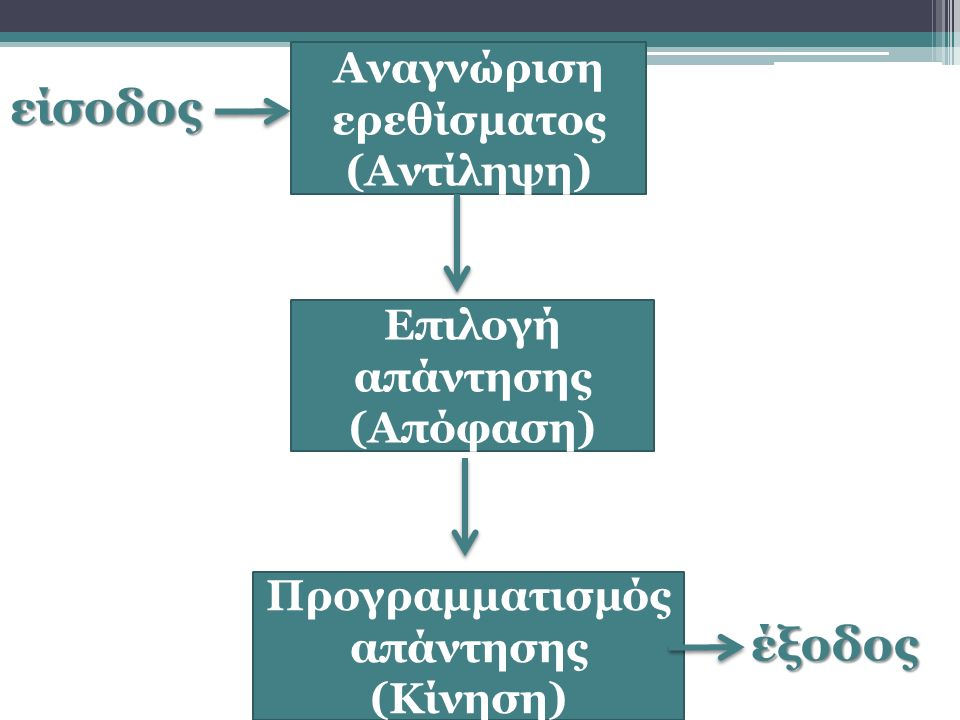 είσοδος Αναγνώριση ερεθίσματος (Αντίληψη) Επιλογή απάντησης (Απόφαση) Προγραμματισμός απάντησης (Κίνηση) έξοδος