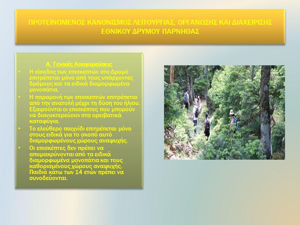 Αντιπυρική προστασία Ο Φορέας Διαχείρισης Εθνικού Δρυμού Πάρνηθας ανταποκρινόμενος στην ανάγκη για αποτελεσματική δασοπροστασία, ειδικά μετά την πυρκαγιά του 2007, συντάσσει κάθε χρόνο σε συνεργασία με το Δασαρχείο Πάρνηθας «Μελέτη Αντιπυρικής Προστασίας», στην οποία καθορίζεται ο ετήσιος σχεδιασμός.