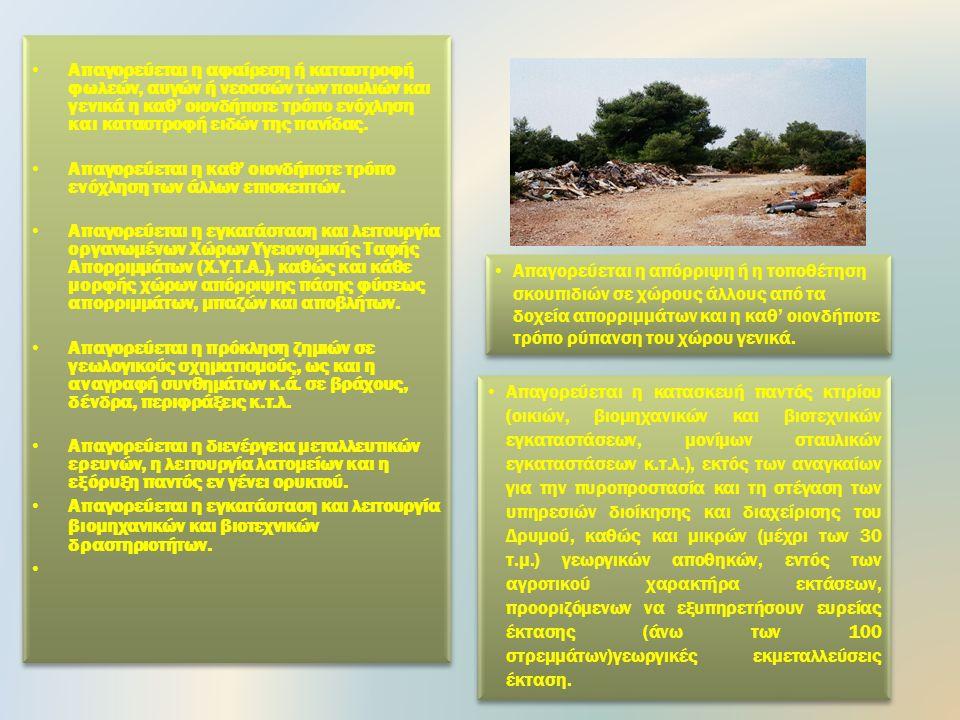 Απαγορεύεται η κατασκήνωση με οποιοδήποτε τρόπο (τροχόσπιτα, σκηνές, κ.λ.π.) σε όλη την έκταση του Δρυμού.