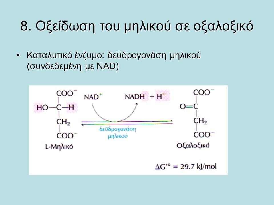 8. Οξείδωση του μηλικού σε οξαλοξικό Καταλυτικό ένζυμο: δεϋδρογονάση μηλικού (συνδεδεμένη με NAD)Καταλυτικό ένζυμο: δεϋδρογονάση μηλικού (συνδεδεμένη