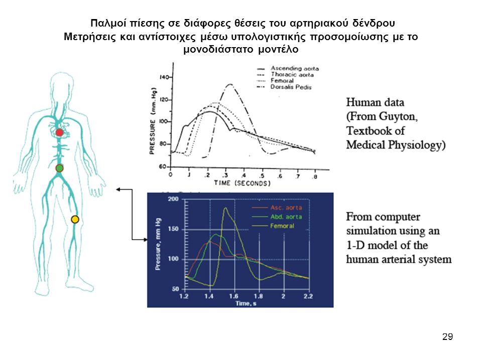 Παλμοί πίεσης σε διάφορες θέσεις του αρτηριακού δένδρου Μετρήσεις και αντίστοιχες μέσω υπολογιστικής προσομοίωσης με το μονοδιάστατο μοντέλο 29
