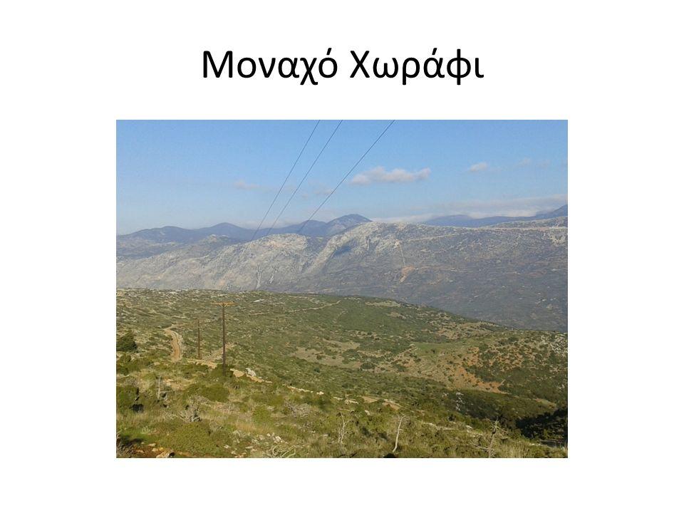 Μοναχό Χωράφι