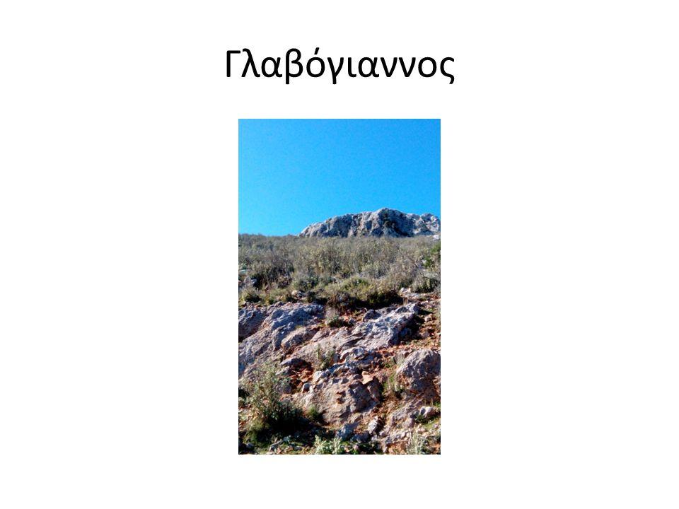 Γλαβόγιαννος