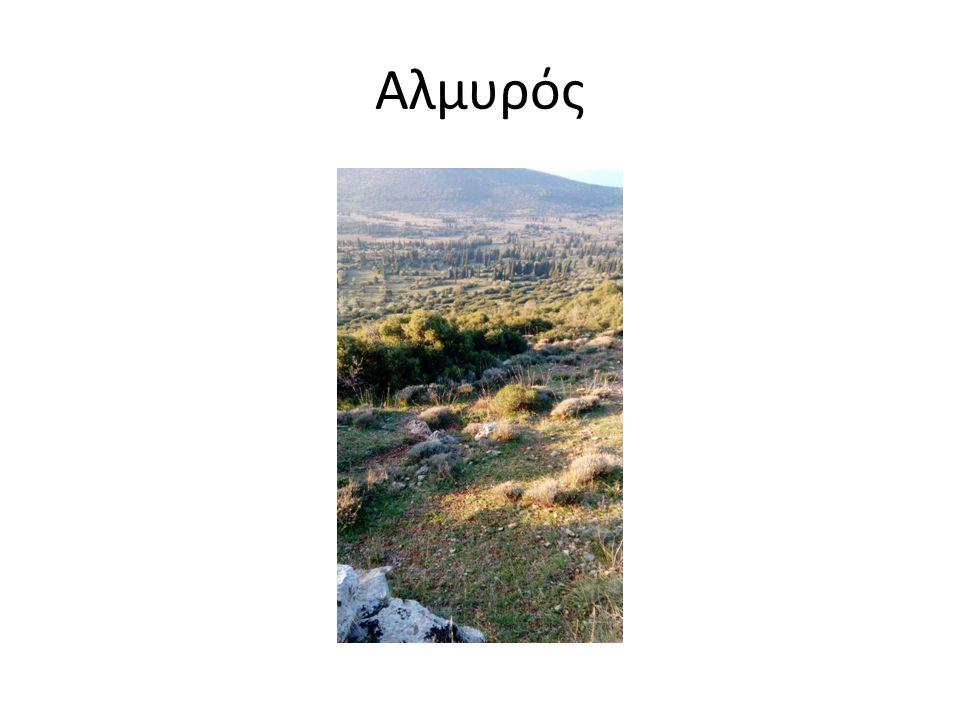 Ο συγγραφέας αποθεώνει τη φύση…  Το νερό της Ρούμελης από την πολλή ορμή που έχει είναι γαλαζοπράσινο.