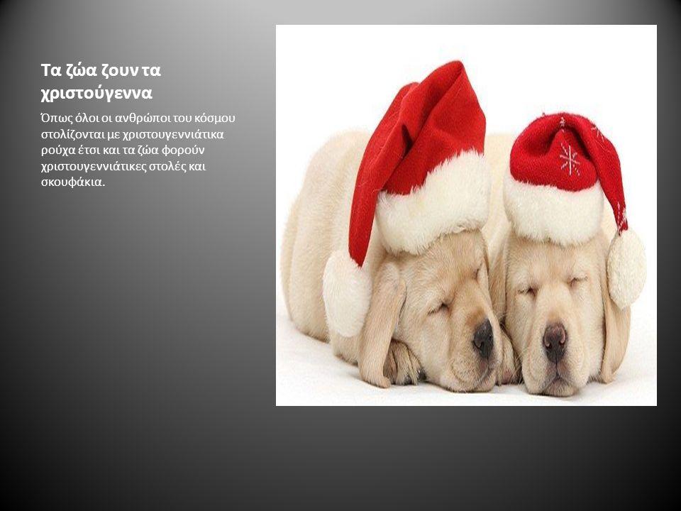 Τα Χριστούγεννα σε όλη την Ευρώπη
