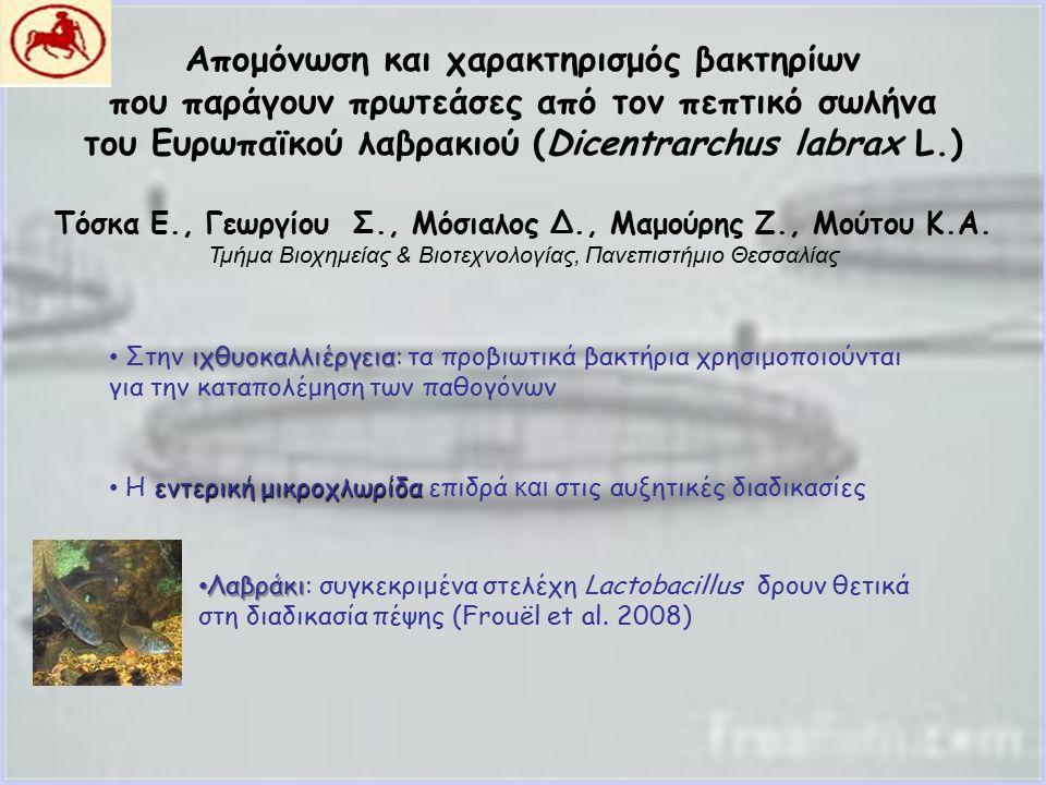 Απομόνωση και χαρακτηρισμός βακτηρίων που παράγουν πρωτεάσες από τον πεπτικό σωλήνα του Ευρωπαϊκού λαβρακιού (Dicentrarchus labrax L.) Τόσκα Ε., Γεωργίου Σ., Μόσιαλος Δ., Μαμούρης Ζ., Μούτου Κ.Α.