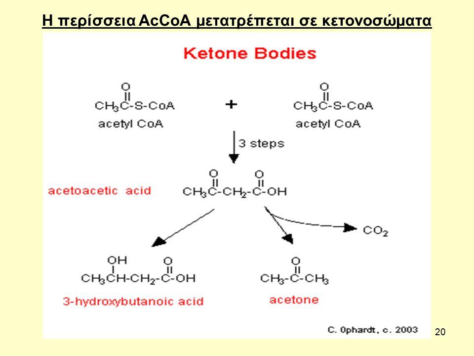 20 Η περίσσεια AcCoA μετατρέπεται σε κετονοσώματα