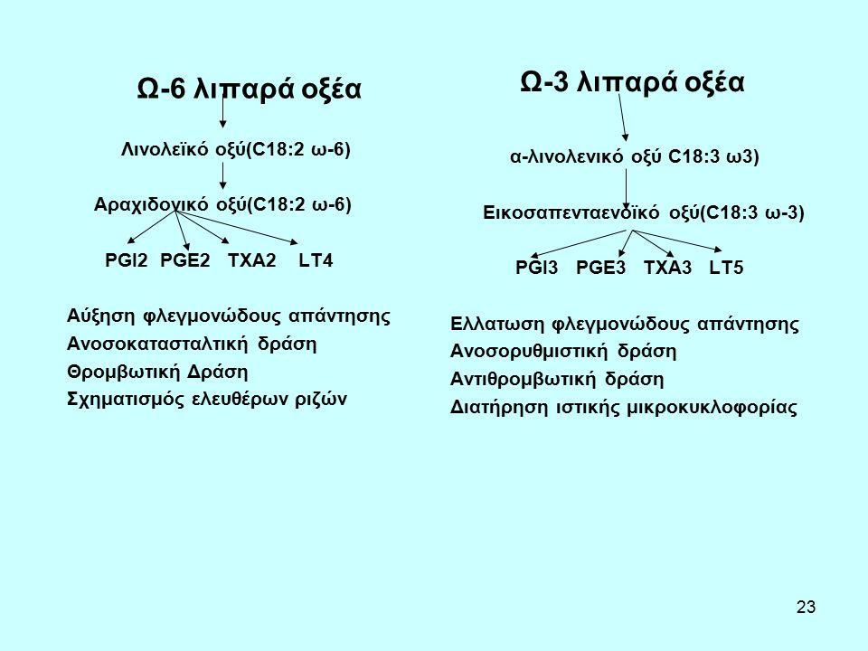 23 Ω-6 λιπαρά οξέα Λινολεϊκό οξύ(C18:2 ω-6) Αραχιδονικό οξύ(C18:2 ω-6) PGI2 PGE2 TXA2 LT4 Αύξηση φλεγμονώδους απάντησης Ανοσοκατασταλτική δράση Θρομβωτική Δράση Σχηματισμός ελευθέρων ριζών Ω-3 λιπαρά οξέα α-λινολενικό οξύ C18:3 ω3) Εικοσαπενταενοϊκό οξύ(C18:3 ω-3) PGI3 PGE3 TXA3 LT5 Ελλατωση φλεγμονώδους απάντησης Ανοσορυθμιστική δράση Αντιθρομβωτική δράση Διατήρηση ιστικής μικροκυκλοφορίας