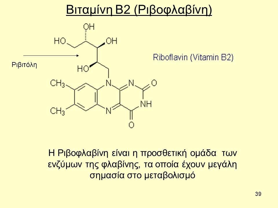 39 Βιταμίνη B2 (Ριβοφλαβίνη) Η Ριβοφλαβίνη είναι η προσθετική ομάδα των ενζύμων της φλαβίνης, τα οποία έχουν μεγάλη σημασία στο μεταβολισμό Ριβιτόλη