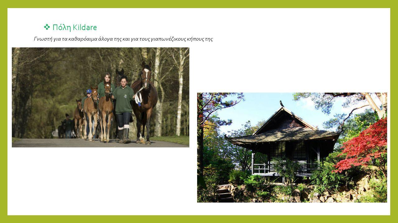  Πόλη Kildare Γνωστή για τα καθαρόαιμα άλογα της και για τους γιαπωνέζικους κήπους της