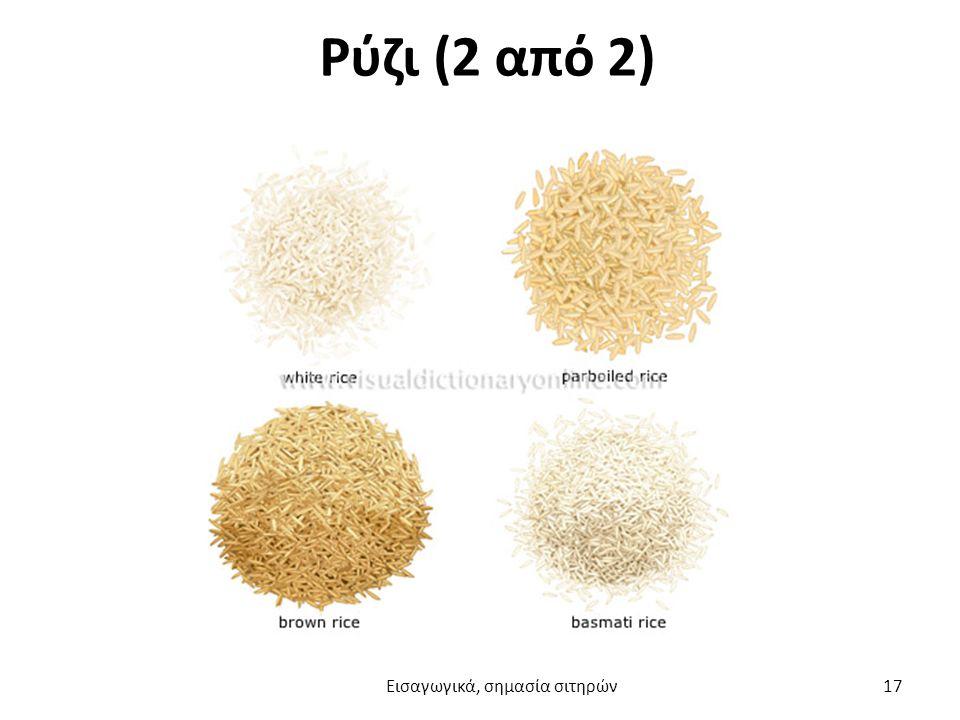 Ρύζι (2 από 2) Εισαγωγικά, σημασία σιτηρών 17