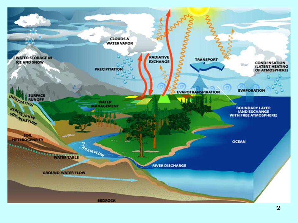 13 Πορεία μολυσματικών παραγόντων στο υδάτινο οικοσύστημα
