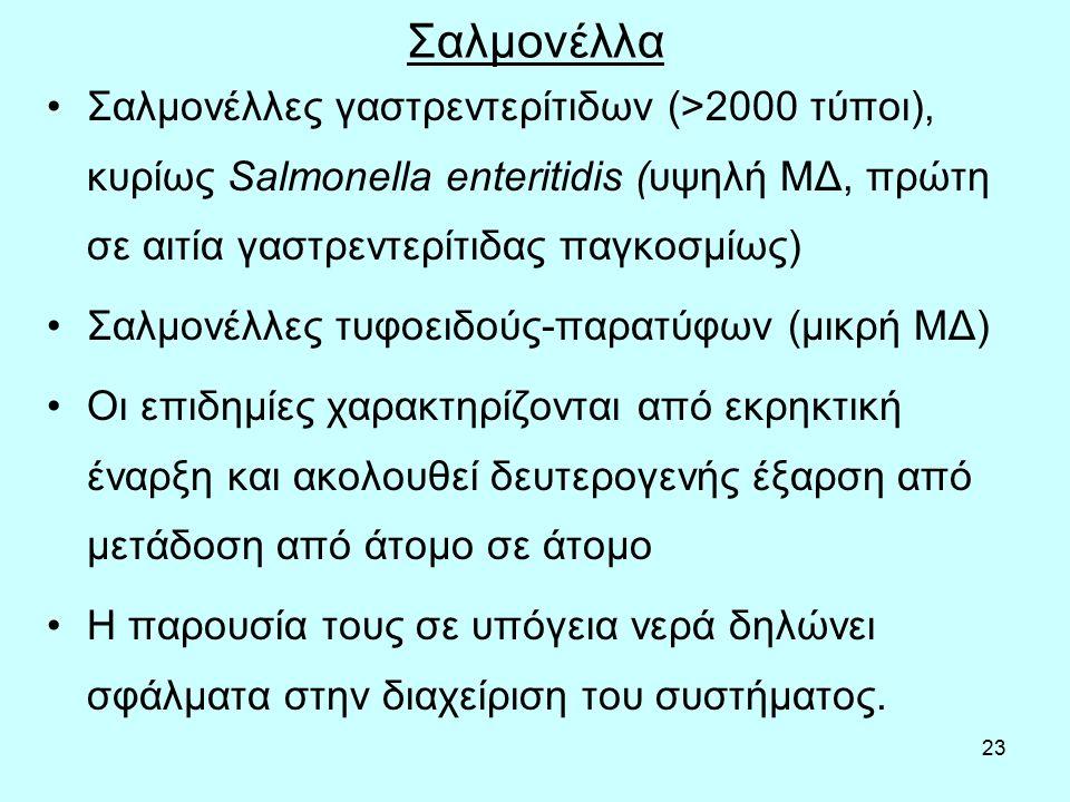 23 Σαλμονέλλα Σαλμονέλλες γαστρεντερίτιδων (>2000 τύποι), κυρίως Salmonella enteritidis (υψηλή ΜΔ, πρώτη σε αιτία γαστρεντερίτιδας παγκοσμίως) Σαλμονέλλες τυφοειδούς-παρατύφων (μικρή ΜΔ) Οι επιδημίες χαρακτηρίζονται από εκρηκτική έναρξη και ακολουθεί δευτερογενής έξαρση από μετάδοση από άτομο σε άτομο Η παρουσία τους σε υπόγεια νερά δηλώνει σφάλματα στην διαχείριση του συστήματος.